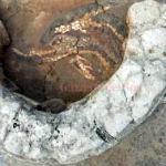 mozaiek calabrie