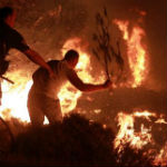 bosbrand augustus 2013