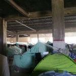 softex kamp