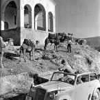 In 1936 waren er blijkbaar kamelen in Griekenland